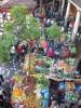 Madère - survOl du marché - (c) 2008 OuiLeO.cOm